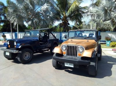 2 JEEPS for sale