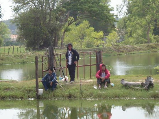 Fishing Park for rent 3km from Udon Thani Road Road