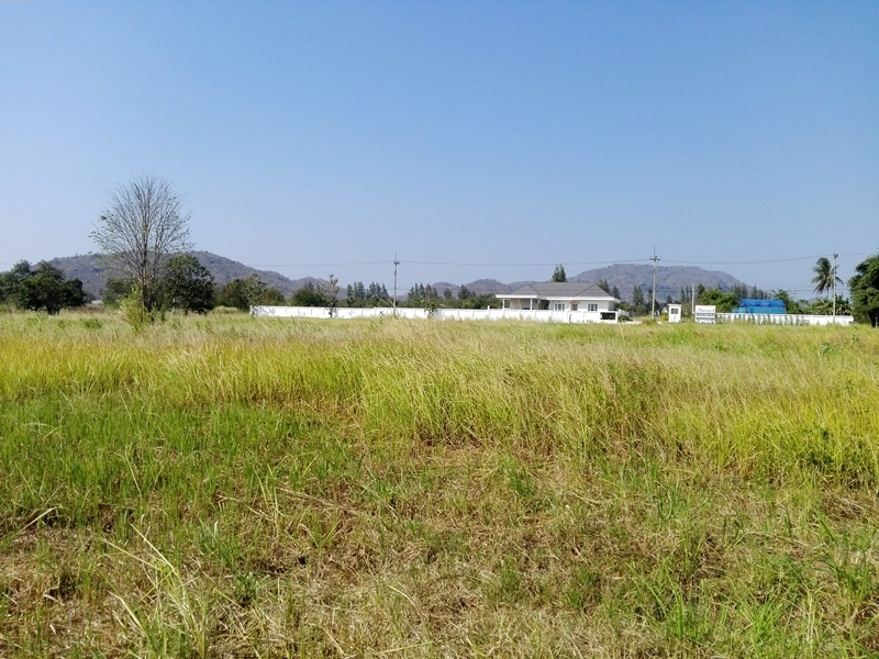 Owner Willing to Cut Minimum 2 Rai Plot 35 Meter Paved Rd. Frontage