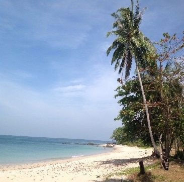 Koh Lanta Beach Land for Rent/Sale