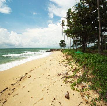 Koh Lanta Beach Land for Sale/Lease