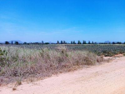 Big Land For Big Plans 1,300 Rai Hua Hin  Bypass Frontage