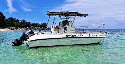 25 ft speedboat trimaran 200hp 4 stroke
