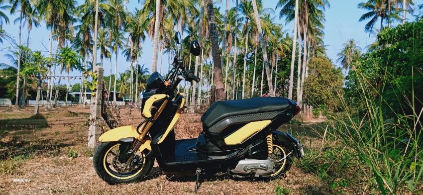 Honda Zoomer2012