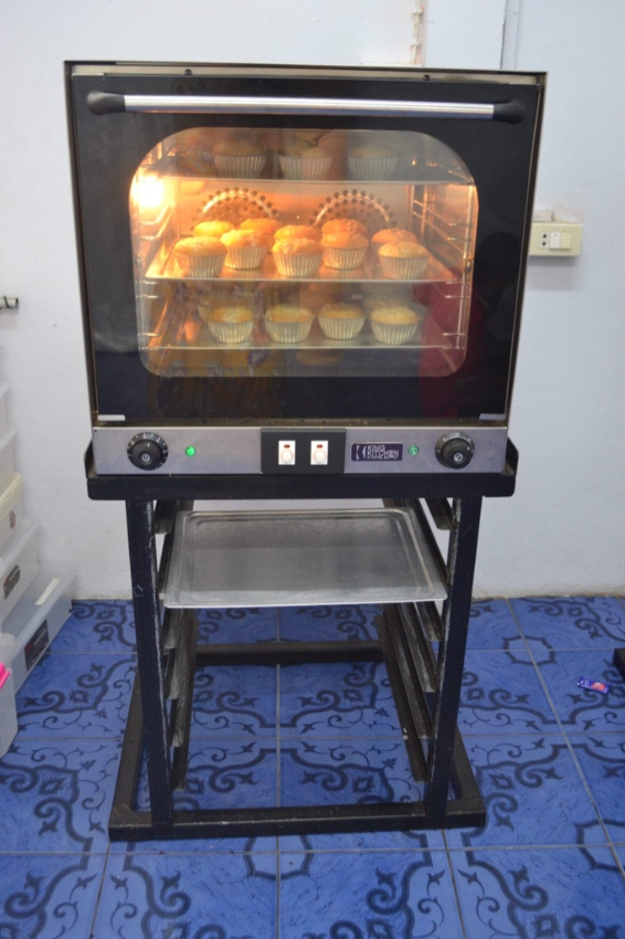 Convection Oven with stand