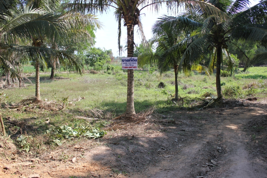 Beautiful site 5 Rai Huay Yai area priced below market