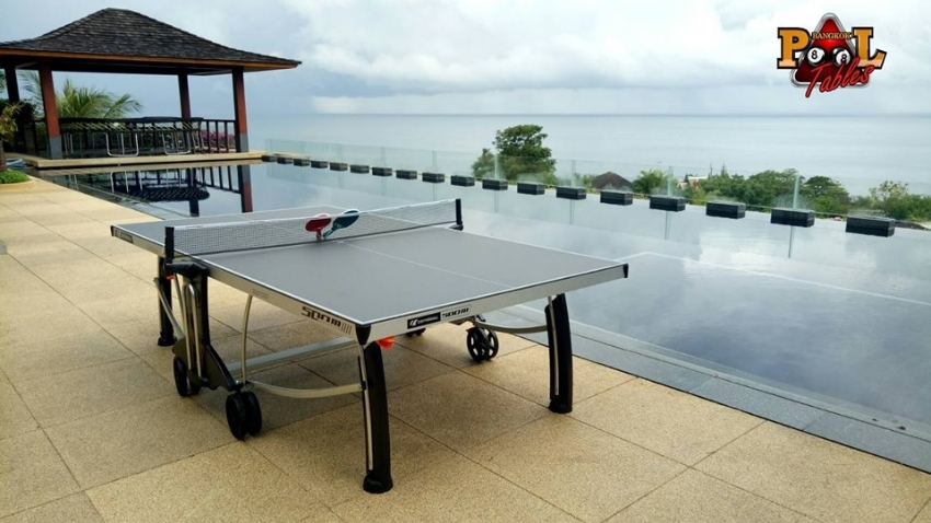 Cornilleau Ping-Pong (table tennis) Outdoor And Indoor