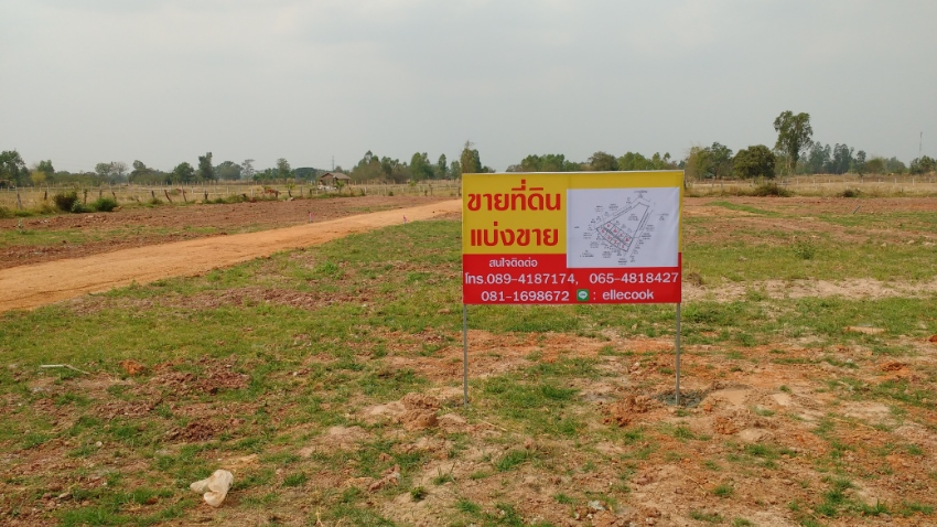 Land. House lots for sale.