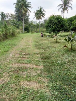 Hua-Hin Land for sale