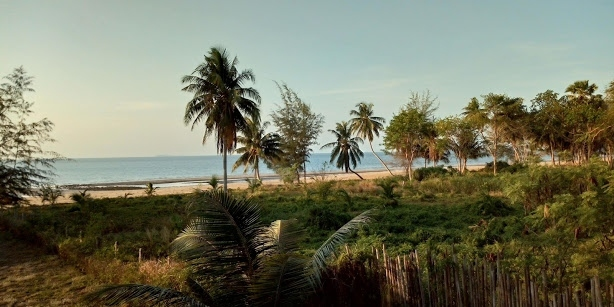 Absolute Beach Front Land