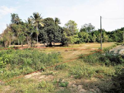 Cheap Chanote land for sale in Klong Wan  - ขายที่ดินมีโฉนดคลองวาฬ