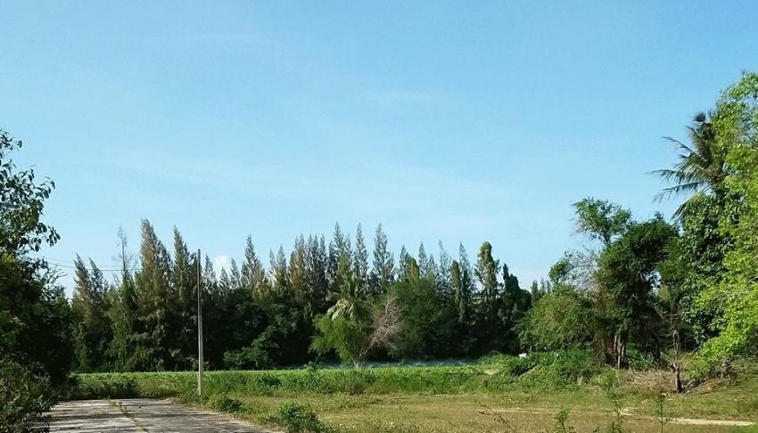 Cheap Chanote land for sale in Klong Wan - ขายที่ดินมีโฉนด