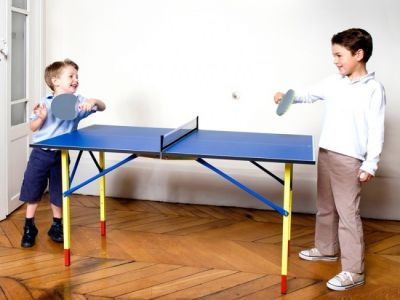 Mini Ping Pong / Table Tennis