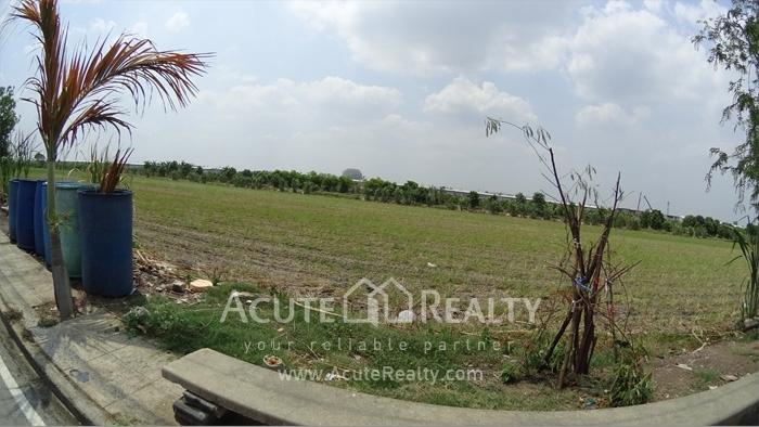 Land for sale,khlong Sam, Pathum Thani