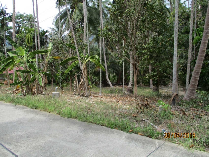 Nice Plot For Sale In Khanom near Nai Phlao Beach
