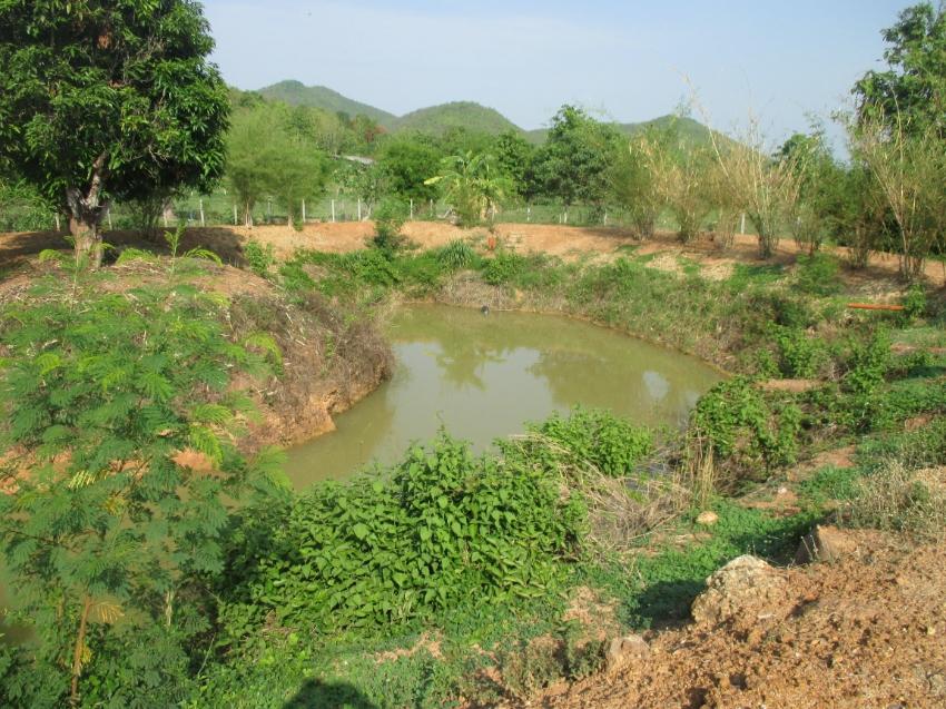 Prestige land in quiet valley