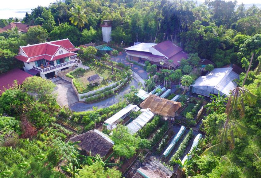 House / Land & Organic Thai Cookery Class