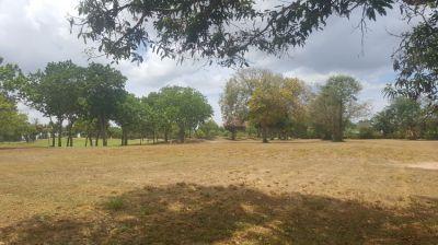 Huay Yai - Phoenix Gold Golf Course - two adjoining 1 rai plots