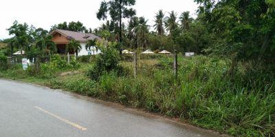 Bangsaphan LAND FOR SALE  1 Rai