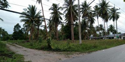 BANGSAPHAN 5 Plots of LAND FOR SALE (140/180/180/180/220 TW)