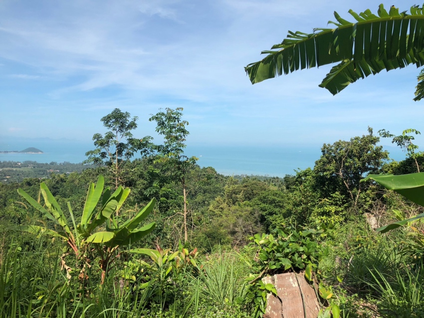 49 RAI LAND IN ANG THONG PERFECT FOR HOTEL OR VILLA PROJECT