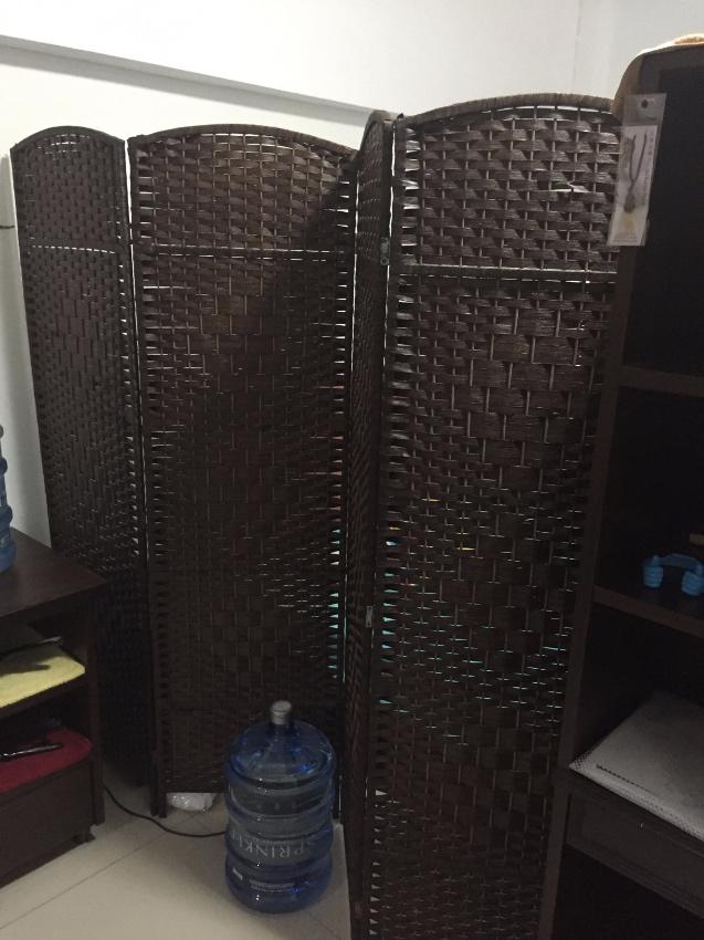 sofa/bed, refrigerator, room partition/divider