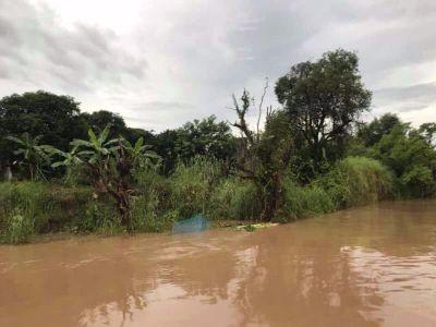 Land for sale near the Chao Phraya River Phra Nakhon Si Ayutthaya 8 kilometers from the island