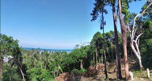 seaview land for sale in Hinkong