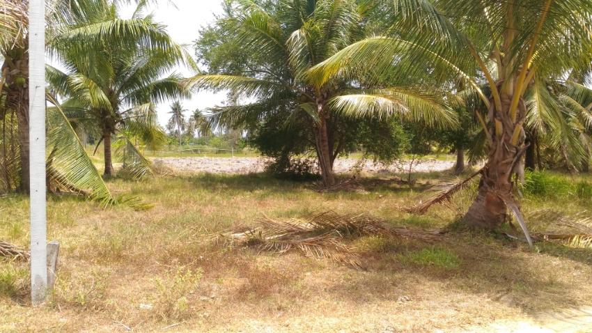 Land for sale in Prachuap khiri khan 456 Sqm.