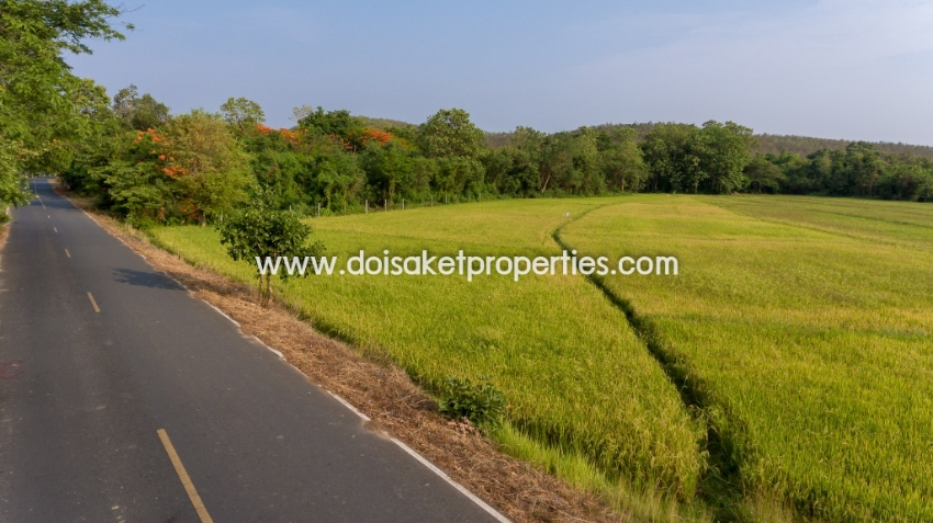 (LS310-02) Beautiful Plot of Land For Sale with Mountain and Rice Padd