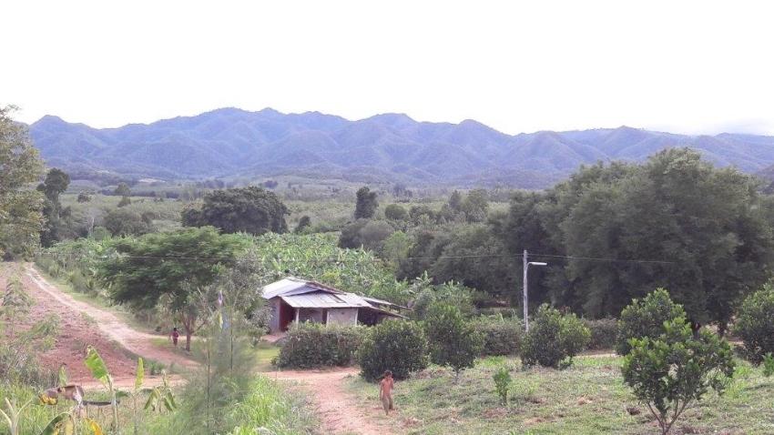 Plot of farming land