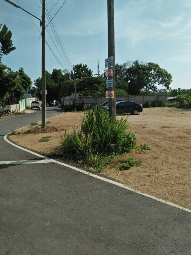 Land for sale 100tqw