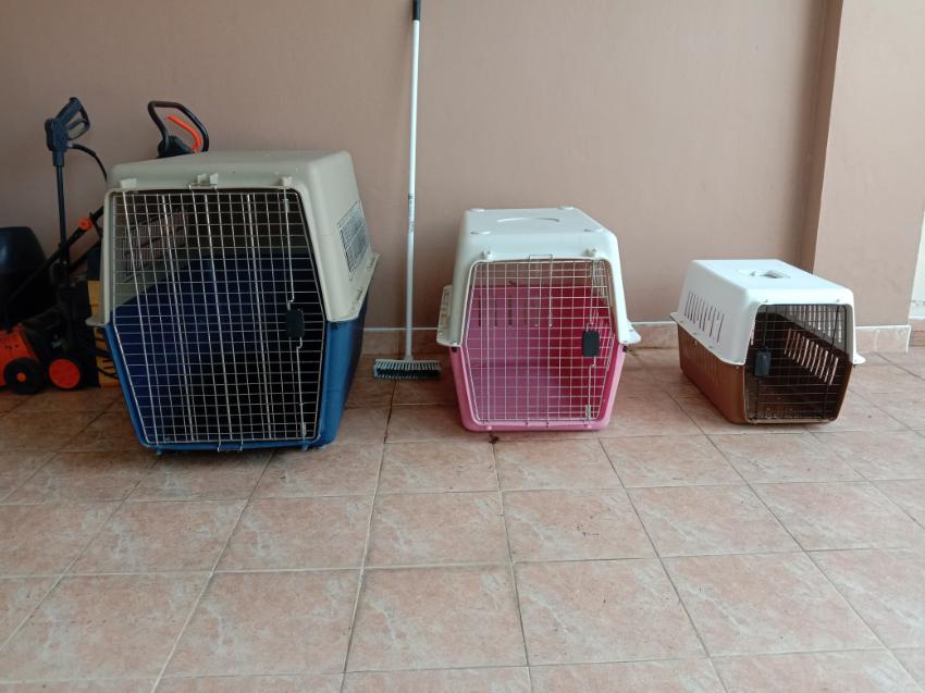 3 different sized IATA flight crates, indoor/outdoor kennels.