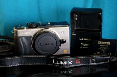 Panasonic GX1, 16MP Digital Camera Body