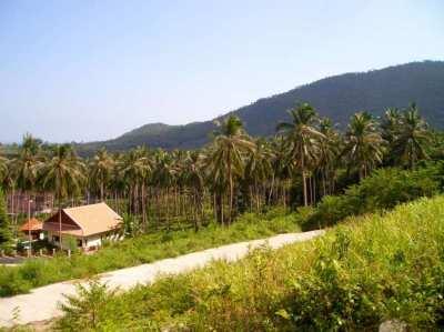 1800 m2 Land Koh Samui