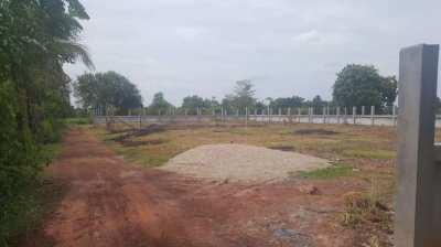 1/2 Rai land for sale