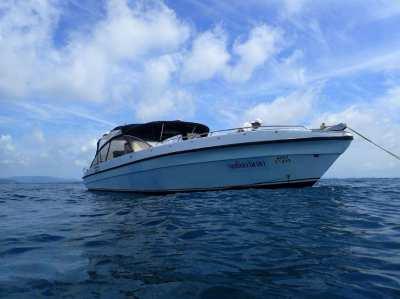 Powerboat 22 pax - 2 x 250 cc fourstroke