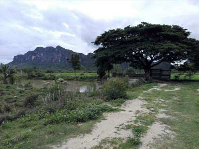 Hot! Fantastic Mountain View 1 Rai with Pond Next to Irrigation Canal