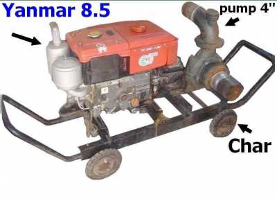 Sell-New pump 4 niou + Motor Yanmar TF 85 + charriot - Ubon