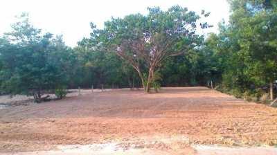 A Super Offer Udon Thani building plot 151 Talang Wa