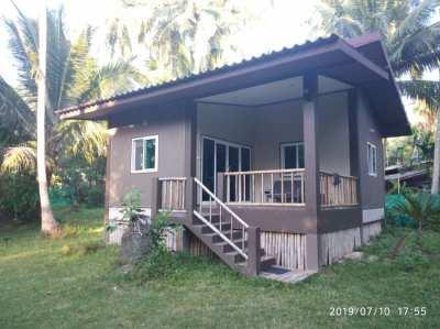 Resort koh Phangan ,7 deluxe house, swimming pool, bar, restaurant
