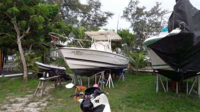 Robalo 260  American Sport Fishing Boat