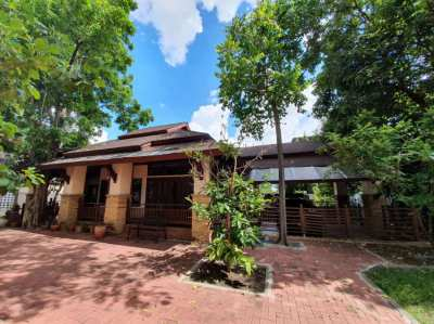 Contemporary Resort Style House in Ladprao/Bangkapi Area for Rent