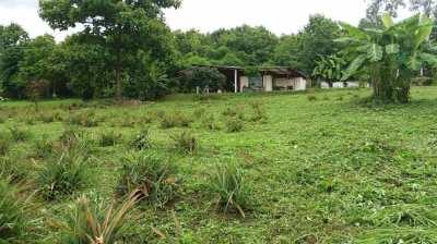 LAND AND BUNGALOW FOR SALE with DEED  6 RAI 1 NGAN 43 TARANGWA