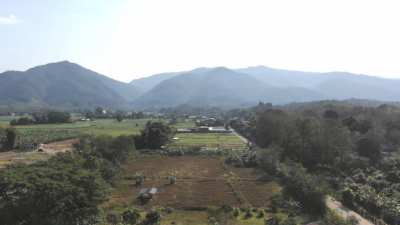 Land plots for sale in the center of Thung Chang (Nan province)