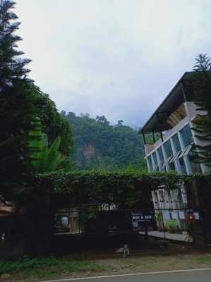 5 Dormitories-26 Beds Hotel/Resort/Guesthouse/Homestay with Five Moder