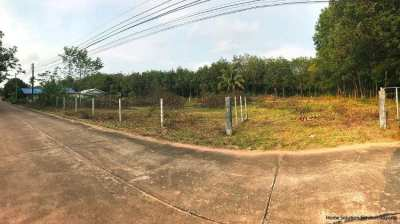 Almost 1 rai land for sale 10 minutes from Chakpong beach in Rayong...