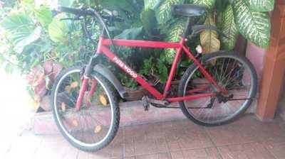 Mountain bike 18 speed