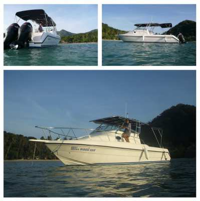 For sale amazing Boat GULF CRAFT (2006)