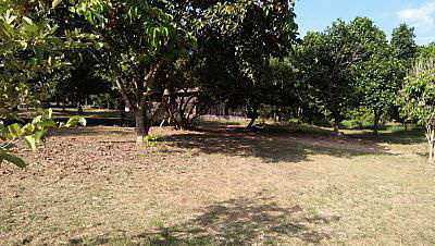 Land for sale, suitable for those who buy a quiet location to practice meditation or meditation. ท่ามกลา